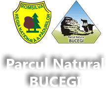Logo Parcul Național Bucegi